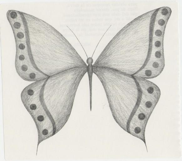 0a65fe6e03b54529fba75cead1dabf47 Jpg 581 516 Mariposas A Lapiz Dibujos A Lapiz Faciles Mariposas Dibujos A Lapiz