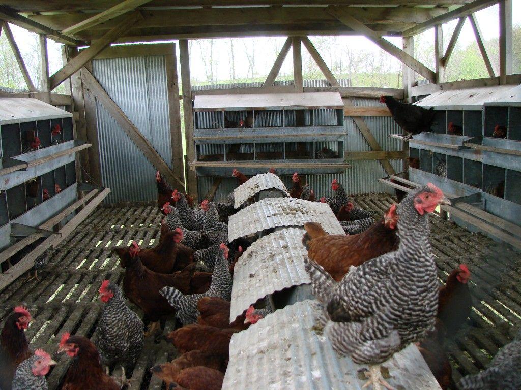a look inside joel salatin u0027s polyface farms eggmobile mid