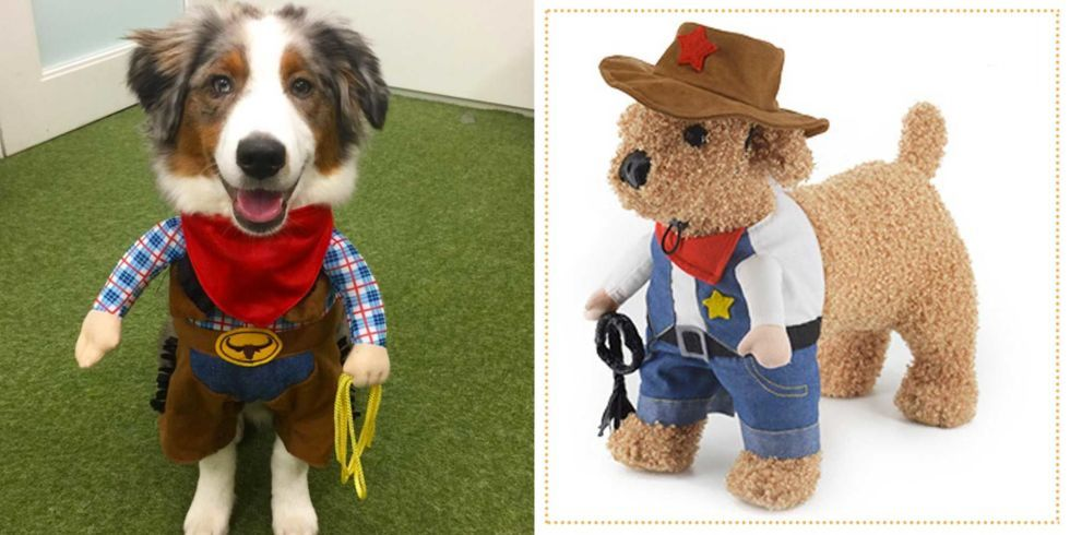 29 Dog Costumes Guaranteed to Humiliate Your Four-Legged Friend & 29 Dog Costumes Guaranteed to Humiliate Your Four-Legged Friend ...