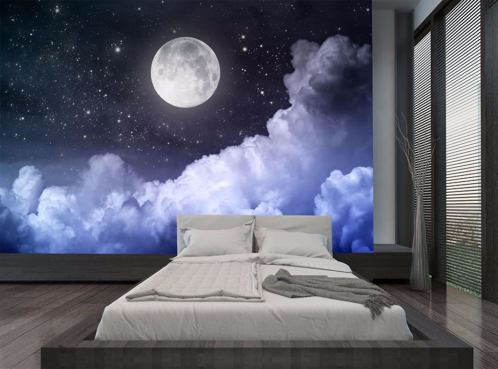 Night Sky Moon Dark Clouds Stars Wall Mural Photo