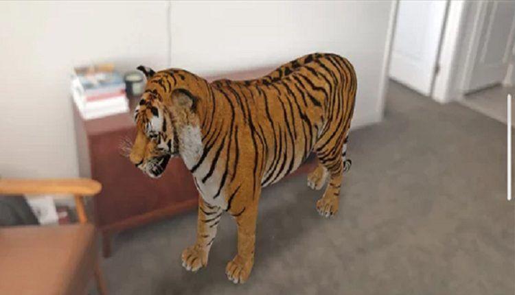 طريقة مميزة لاستعراض حيوانات 3d عبر الهاتف في أي من أماكن تواجدك مفيد للأطفال عربي تك Animals Animals Wild Arabi