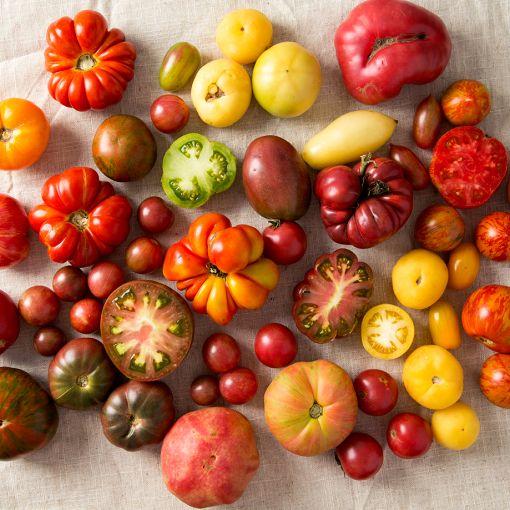 A Guide To The Varieties Of Heirloom Tomatoes Tastebook 400 x 300