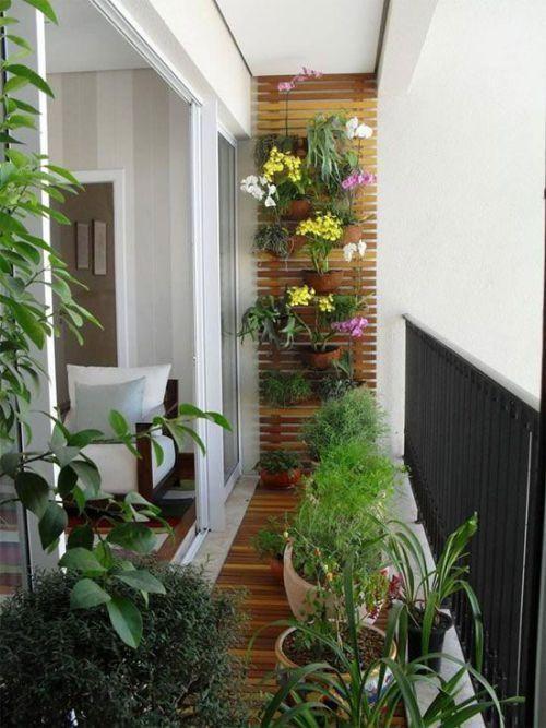 6 Ideas geniales para decorar con plantas in 2018 Plants - Decoracion De Terrazas Con Plantas