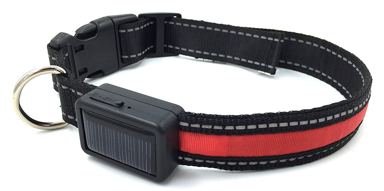 Lightup Dog Safety Collar by glogo active LED Solar