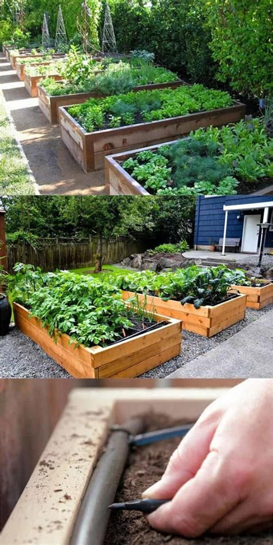 41 Beautiful DIY Backyard Vegetable Garden Ideas Raised