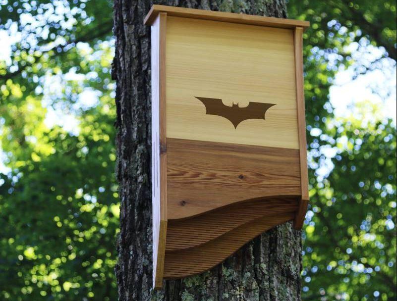batbnb la cabane pour chauve souris pour lutter contre les moustiques pinterest le. Black Bedroom Furniture Sets. Home Design Ideas