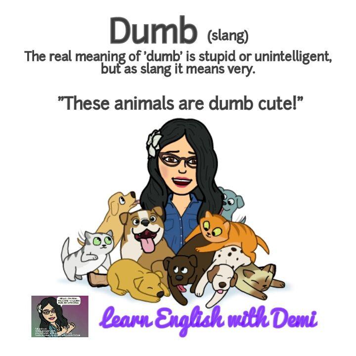 Slang Dumb Slang English English Vocabulary Words English Idioms And Phrases