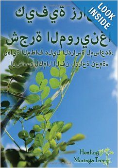 Arabic Edition How To Grow A Moringa Tree A Complete Guide To Growing The Superfood Moringa Tree Species Easy To Underst Moringa Tree Moringa Moringa Seeds