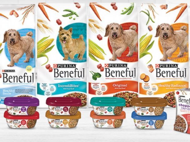 A Dog Owner Has Filed A Lawsuit Against A Pet Food Company