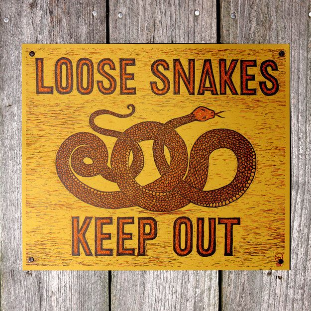 Plus another print to keep away intruders ($25). | 26 Products For People Who Are Completely Obsessed With Snakes