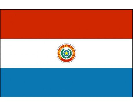 Flag Of Paraguay Paraguay Flag Flag Flags Of The World