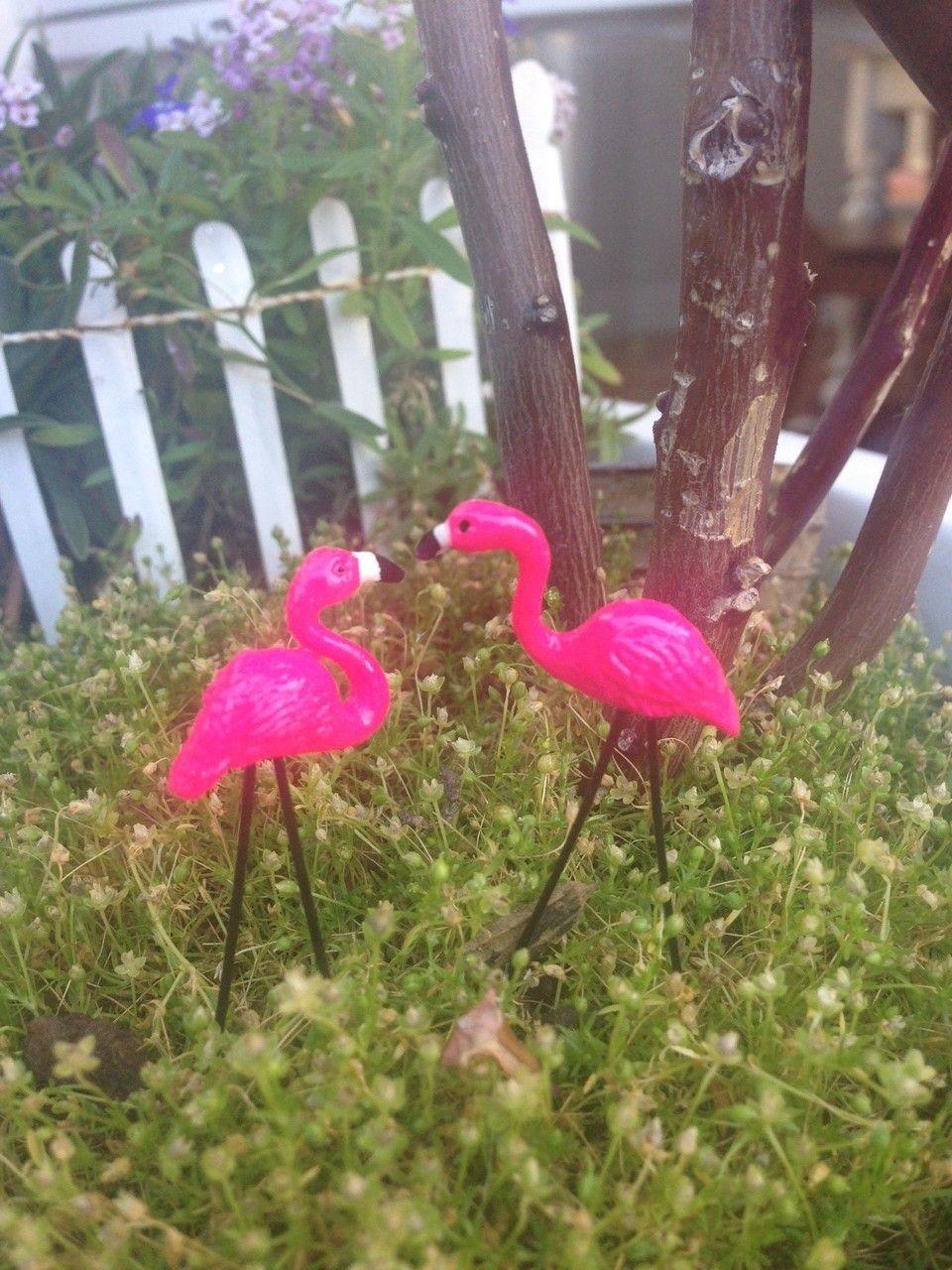 Mailbox Rustic (Opens) Pink flamingos, Christmas