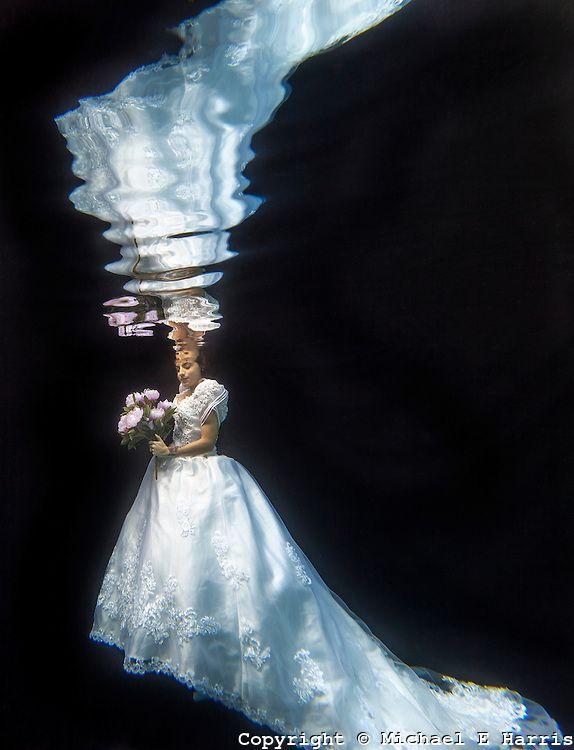 underwater with alex michael harris photogra