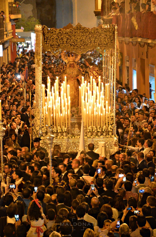 Hermandad De La Amargura María Santisima De La Amargura Coronada Semana Santa Sevilla Ciudad De Sevilla Semana Santa