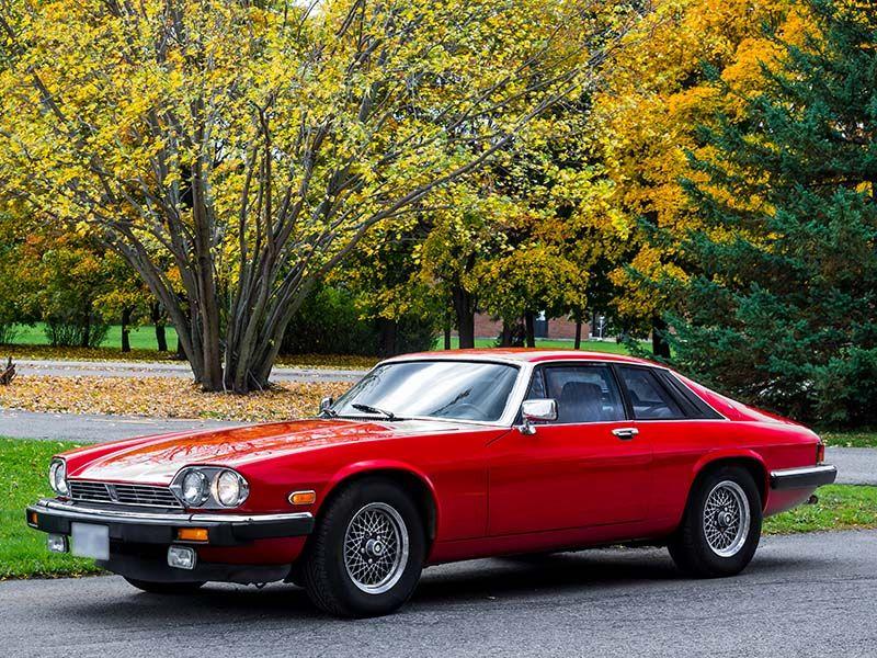 1983 Jaguar XJS | Jaguar car, Jaguar, Jaguar xj