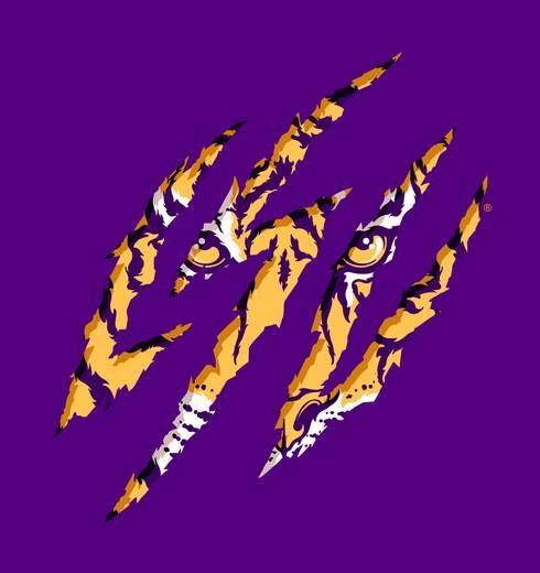 Pin On Lsu Tigers