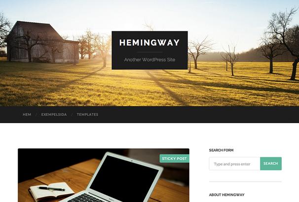 Hemingway | Web Design and Development | Pinterest