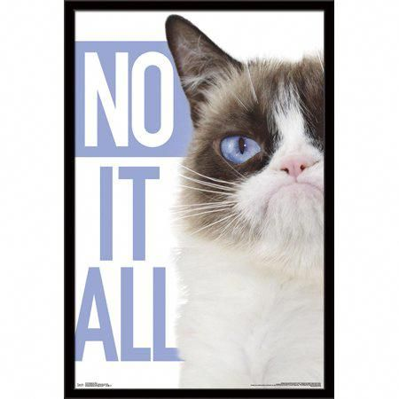 Cats Reddit CanCatsEatBread Grumpy cat, Cats, Blue poster