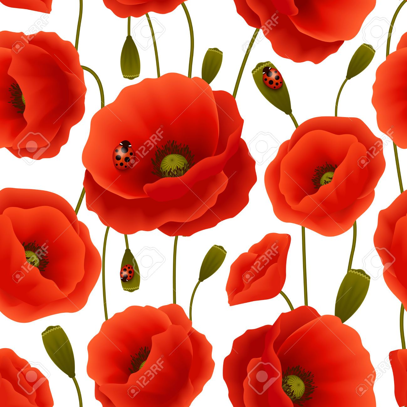 27827777 vibrant floral seamless pattern of poppy flowers and 932c6544750edcb24b575bb8fc96c9dbg mightylinksfo