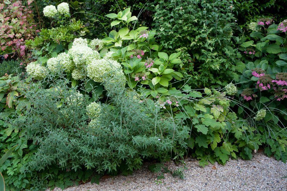 Terrasse en rez de jardin paris 16 jardins secrets pinterest jardins paysagiste et chirac - Rez de jardin paris ...
