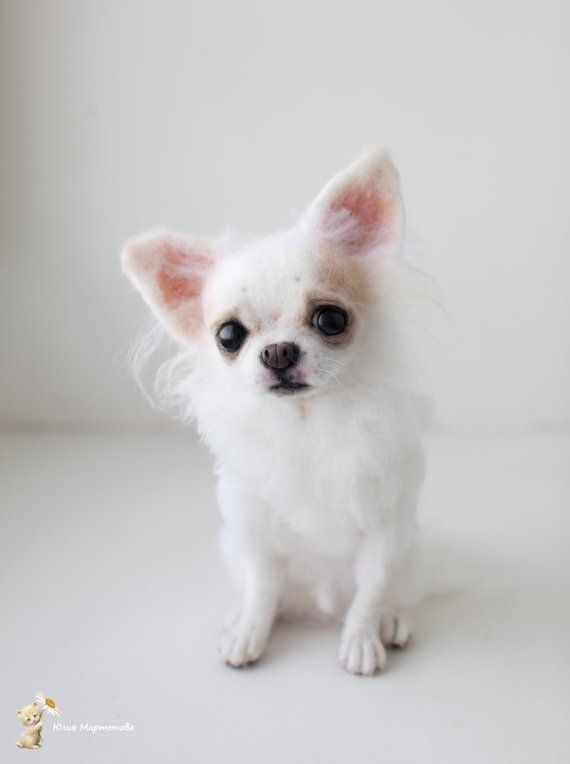 Custom Dog Portrait Felted Long Hair Chihuahua Sculpture Pet
