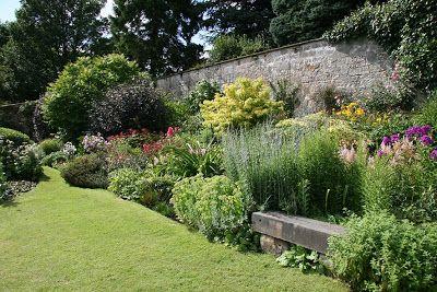 buddleja garden seat - Google Search