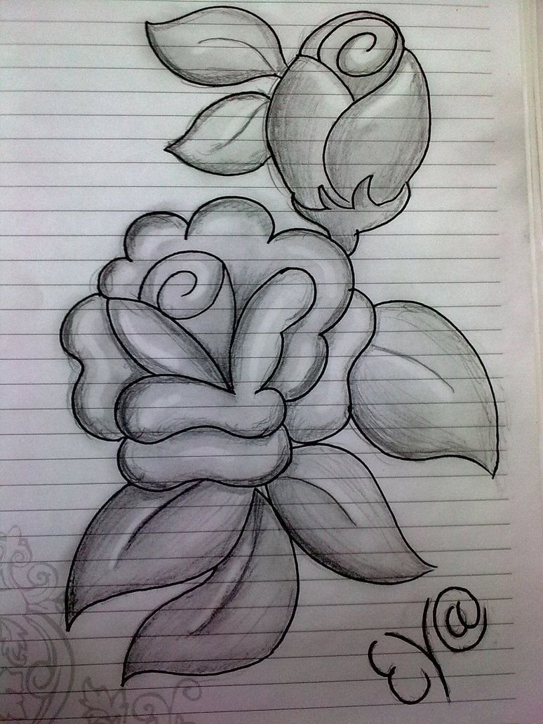 Sketch pencil painting in flowers drawing