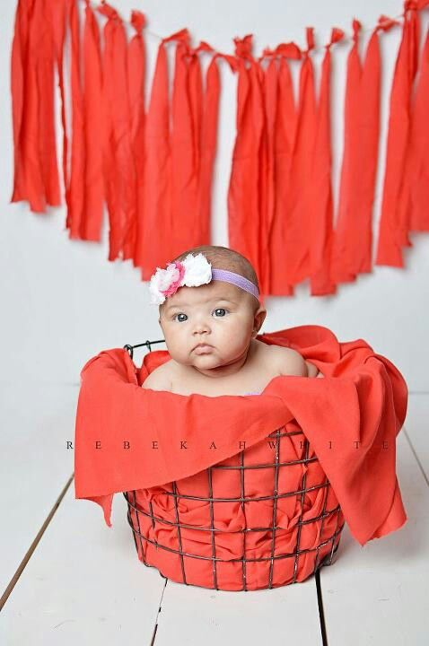 Baby Girl Photoshoot Ideas At Home : photoshoot, ideas, Months, Photoshoot, Ideas, Viewer