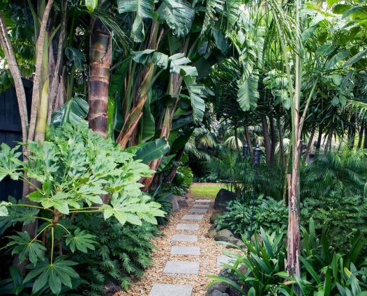tropical garden australia #courtyardgarden #courtyard #garden #bamboo#australia #bamboo #courtyard #courtyardgarden #garden #tropical #tropischelandschaftsgestaltung