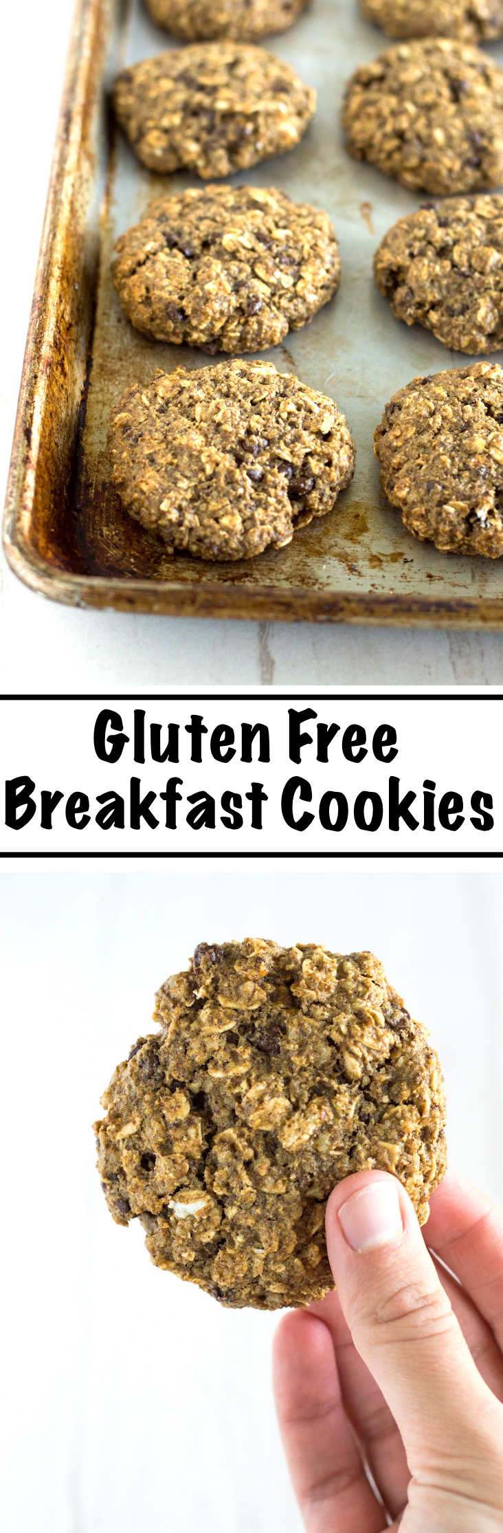 The perfect start to a busy day to give you the energy you need. Gluten Free Breakfast Cookies are soft yet hearty and packed with good things like oats, walnuts, flax and chocolate.   nourishedtheblog.com   Gluten Free Breakfast Cookies
