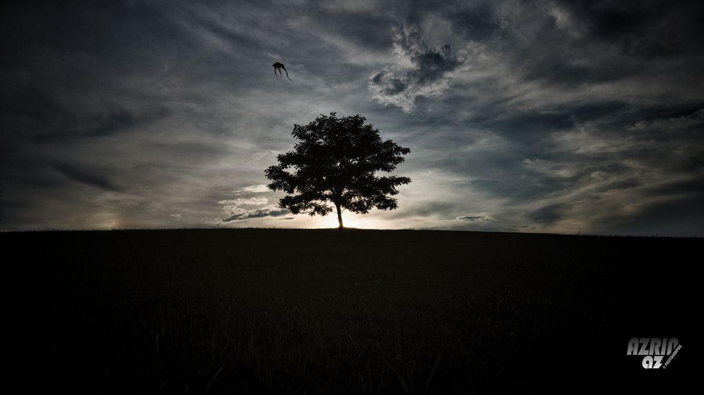 Flying Kite by Azrin Az on 500px
