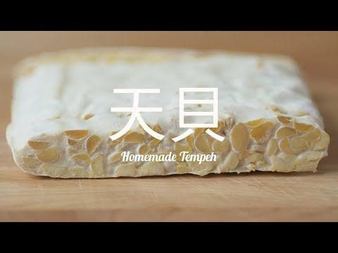 天貝是印尼的發酵食品,看起來好像牛札糖。由根霉屬真菌接種到脫皮黃豆發酵而成,蛋白質豐富,天貝發酵 ...