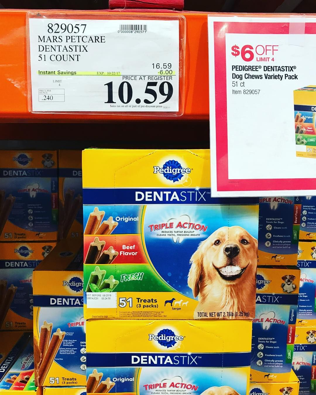 Freshen Your Dog S Breath And Brighten Their Smile With Pedigree