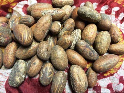 The Amazing Health Benefits of Kola Nut