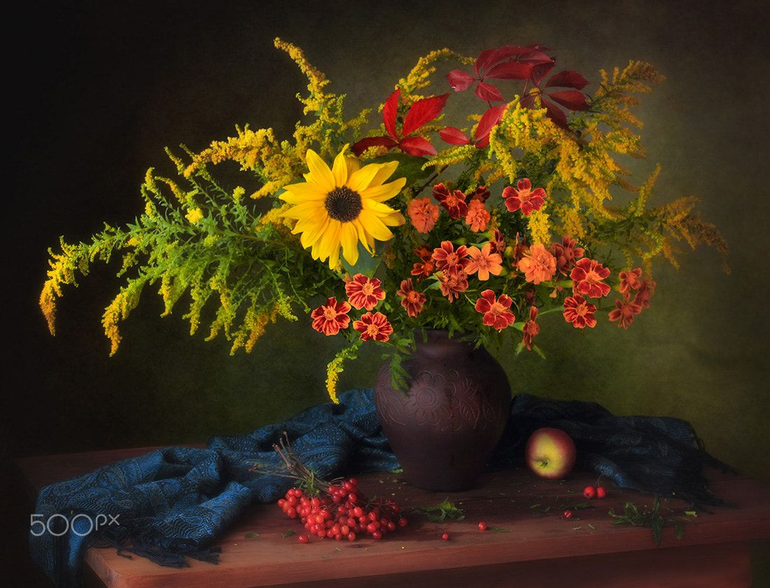 смена колючек осенний цветок фото арт поможет