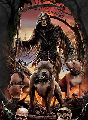 Details About Skull And Dog Lenticular 3d Picture Poster Painting