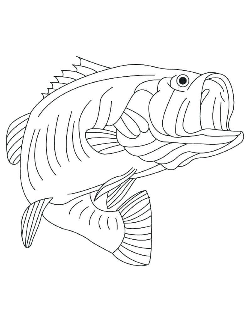 Awesome Coloring Page Book That You Must Know You Re In Good