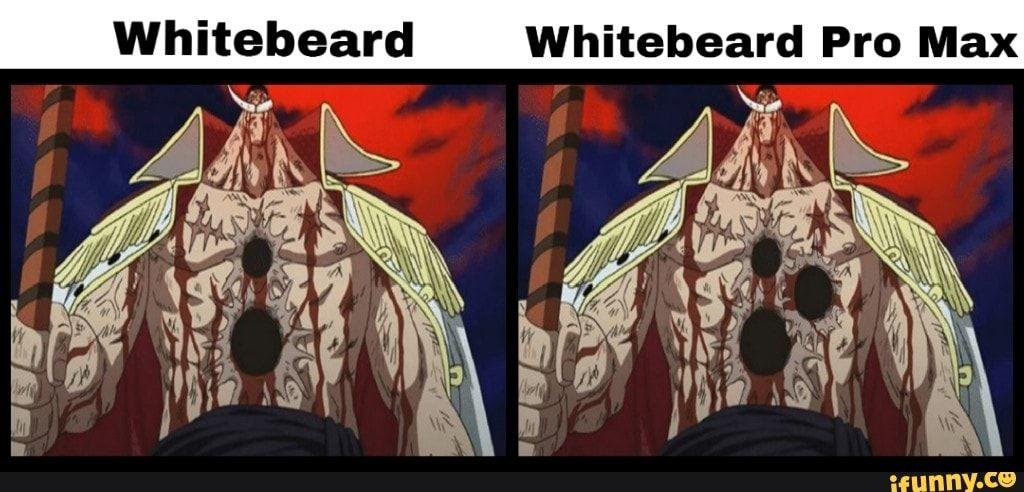 Whitebeard Whitebeard Pro Max - iFunny :) | One piece ...