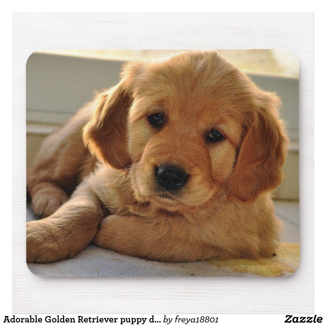 Adorable Golden Retriever Puppy Dog Mouse Pad Zazzle Com Dogs Golden Retriever Golden Retriever Golden Retriever Puppy