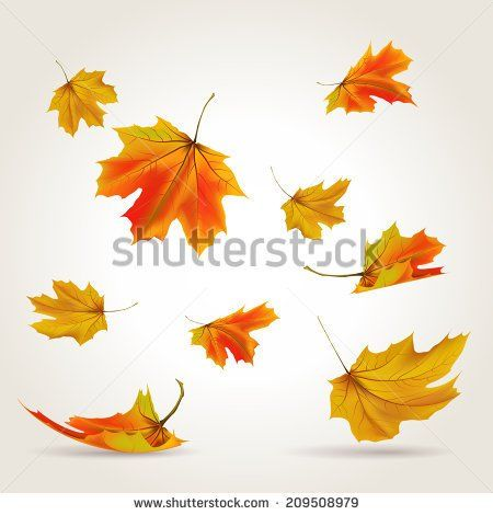Autumn Background Falling Leaves Free Vector Download 42 306 Files For Commercial Use Format Ai Eps Cdr Svg Vec Vector Illustration Leaf Images Leaf Art