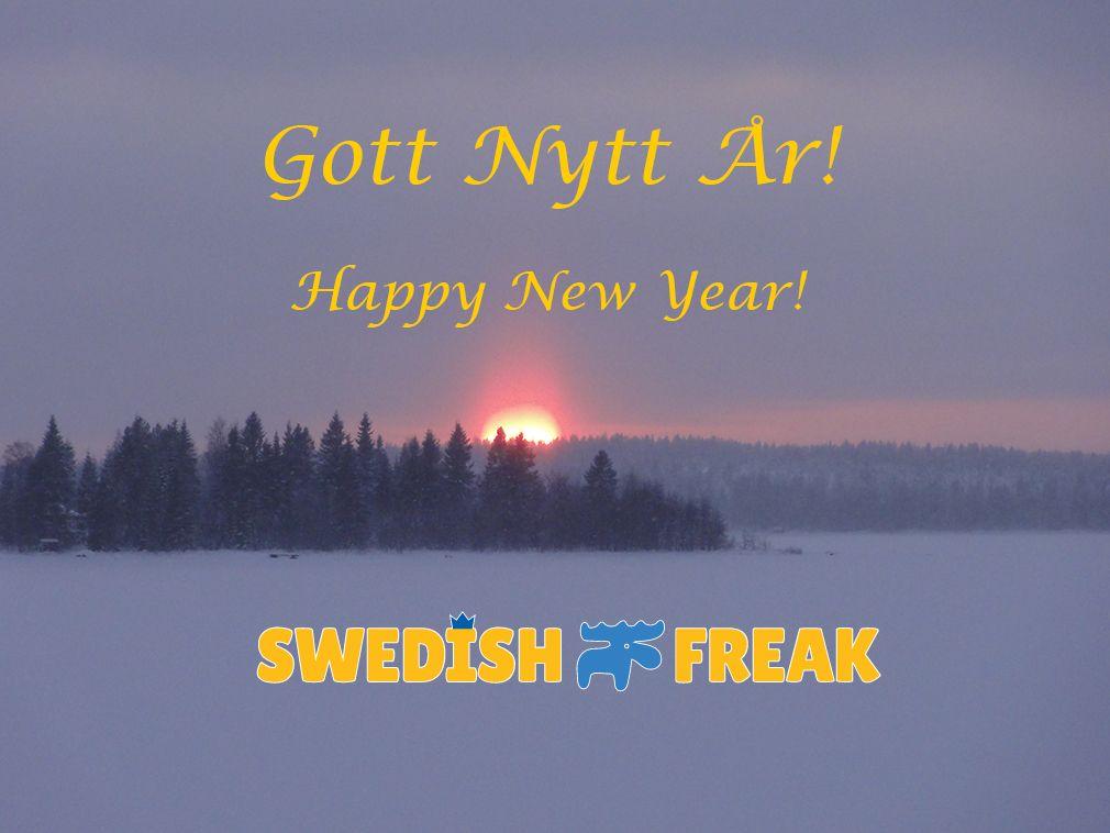 Gott Nytt År   Happy New Year From Swedish Freak!
