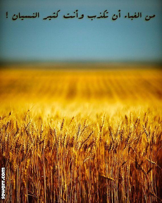 صور عن الكذب Sowarr Com موقع صور أنت في صورة Minimalist Photography Minimalist Landscape Wheat Fields
