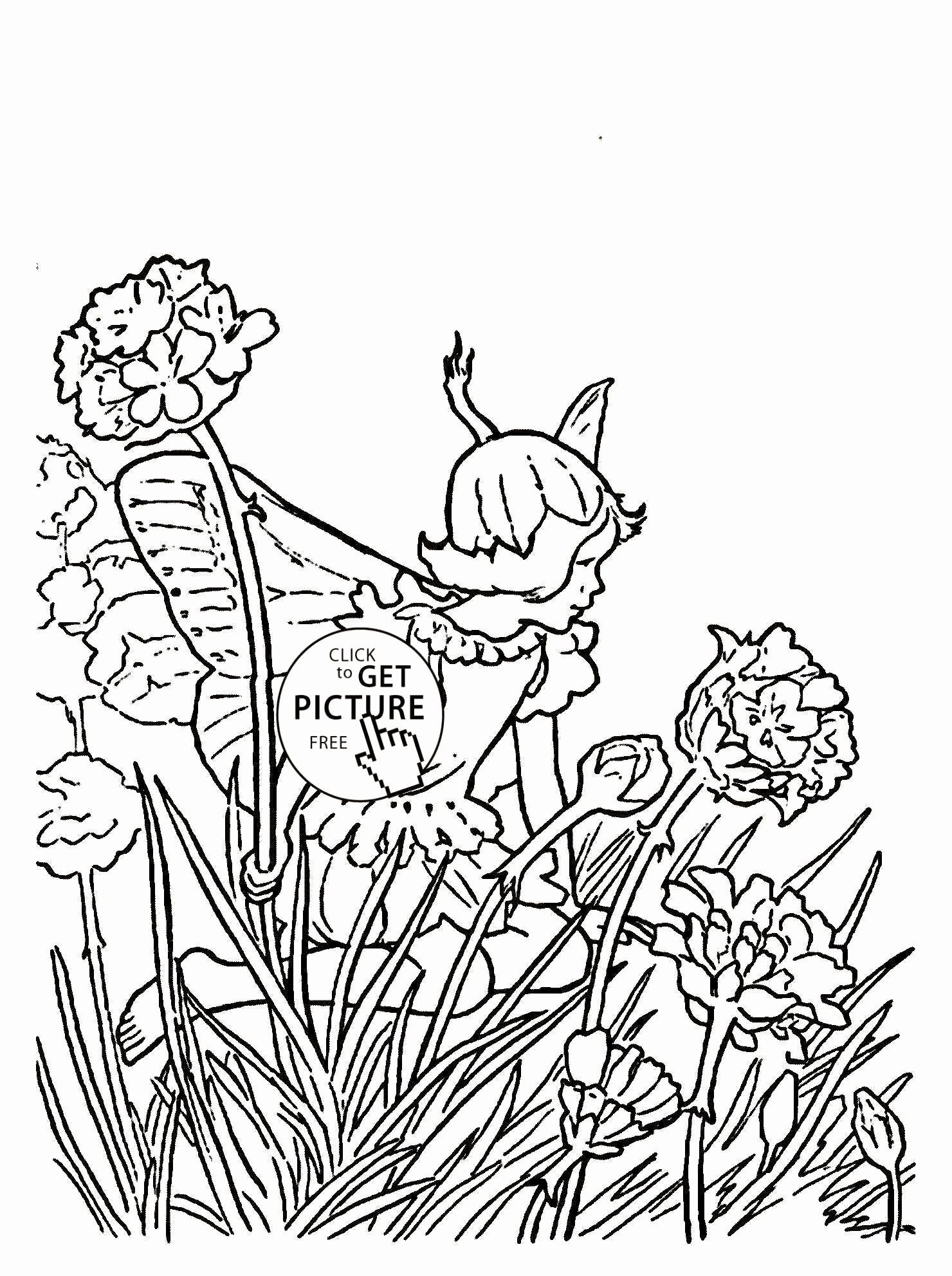 Coloring Book Jungle Animals New Coloring Pages Coloring Book Program Dog Sheets Printable Christmas Coloring Pages Animal Coloring Pages Fairy Coloring Pages