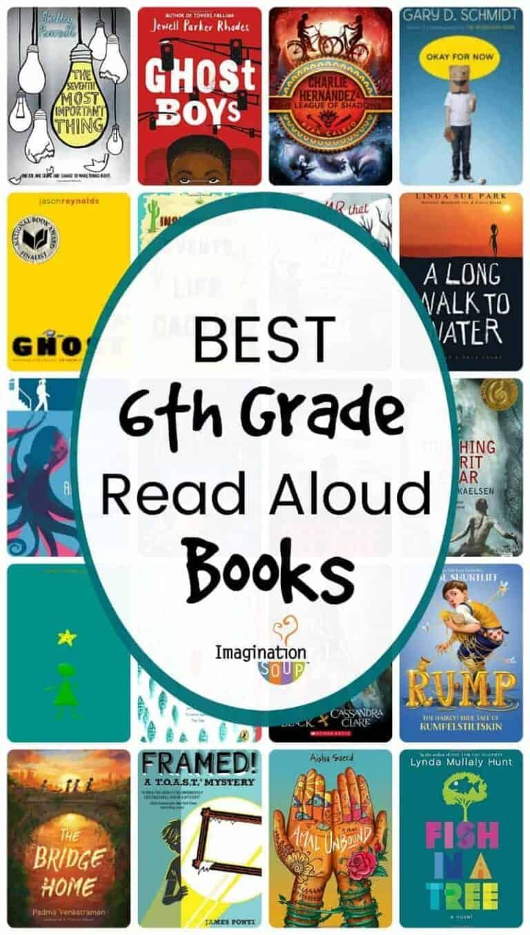 19++ What books should a 6th grader be reading info