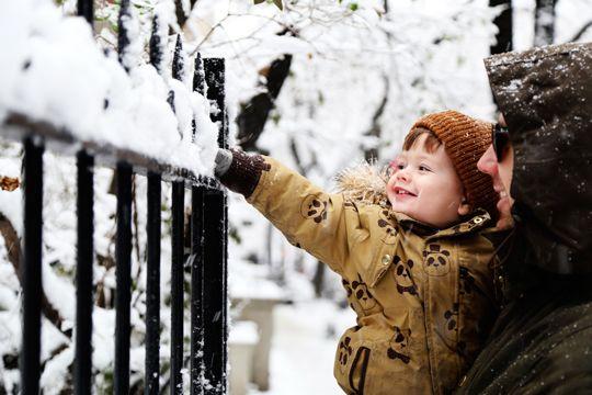 on monday, new york city was a winter wonderland… | Love Taza