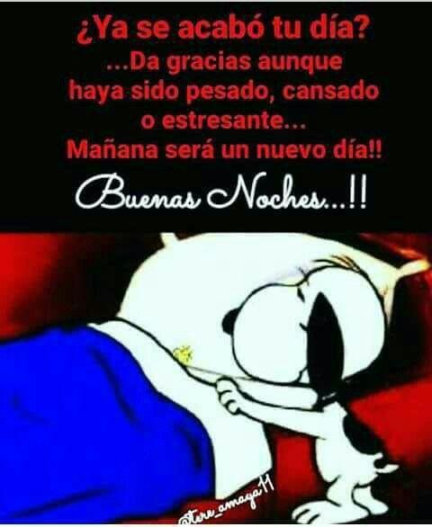 Buenas Noches Buenas Noches Con Snoopy Buenas Noches Tarjetas De Buenas Noches