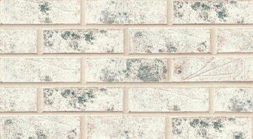 Sioux City Brick Casablanca Modular Brick, Bricks for