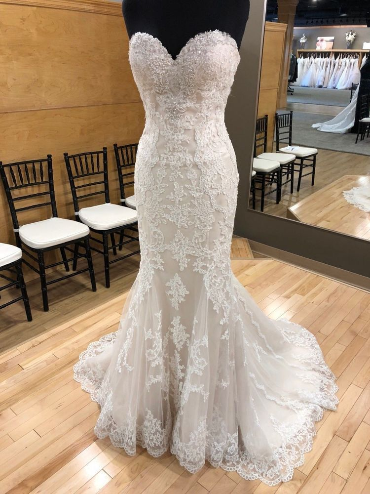 d5dab6068b147 Stella York Wedding Dress- 6220 Ivory Gold Size 12 NWOT  fashion  clothing   shoes  accessories  weddingformaloccasion  weddingdresses  ad (ebay link)