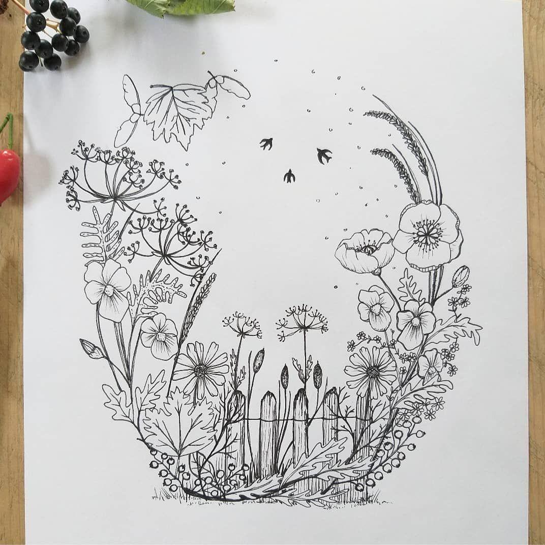 Miriam Wybenga On Instagram L A T E S U M M E R Nazomer Altijd Een Bijzondere Tijd Ik Hou Er Van Wildflow Instagram Wilde Bloemen Drawing