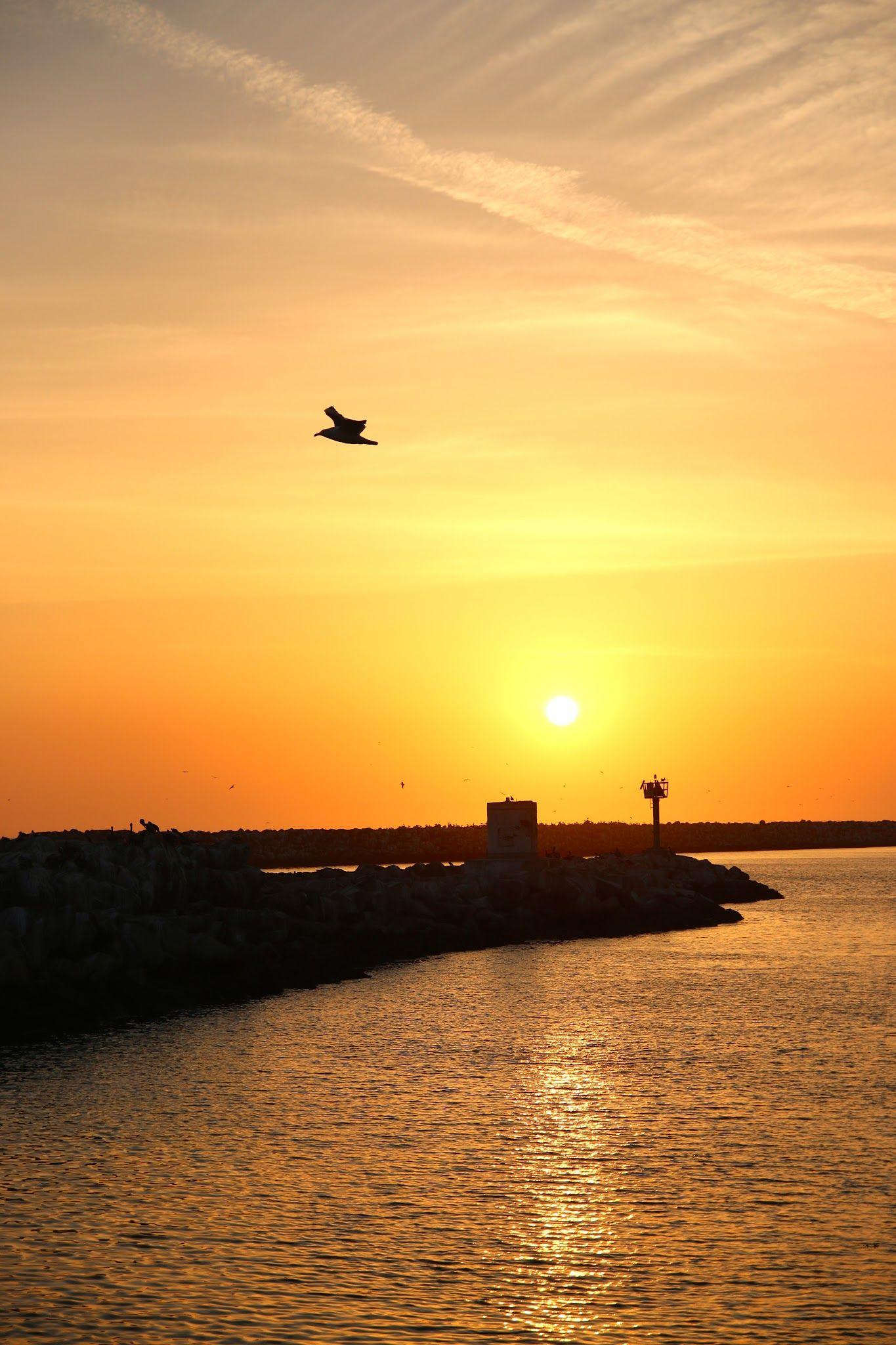 Awesome West Coast Sunset Sunset, Beach sunset, Best sunset